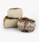 61-erba-barona-corse-lait-cru