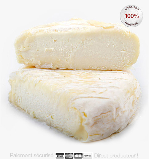 Saint_Marcellin_igp lefromage.fr