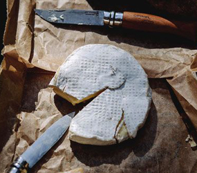 CAMEMBERT DURAND-lefromage